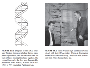 Two men and DNA