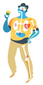 SaaS Anatomy like a Human Body